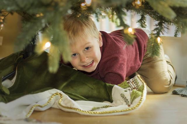 Aaron under Christmas Tree_3900