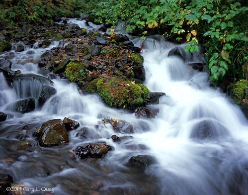wahkeenafalls oregon pacificnorthwest waterfall columbiagorge largeformat velvia fuji filmphotography water autumn
