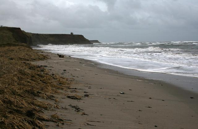 The coast at Berwick-upon-Tweed