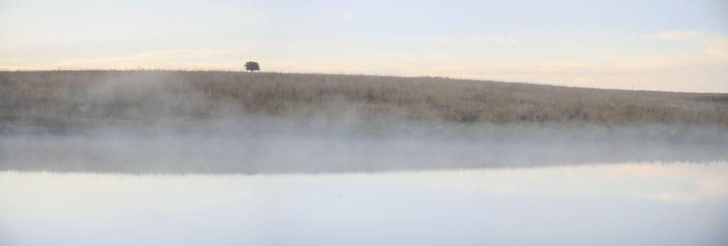 foggy pond- sunrise