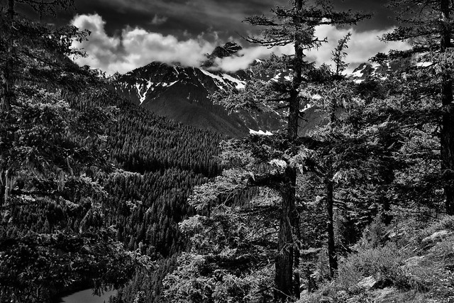 This Land in Black & White (North Cascades National Park Service Complex)