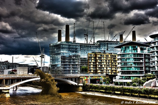 The Battersea construction project has disrupted the local ecosystem.