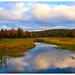 Fall In Adirondacks