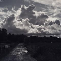 Cloud Monsters.