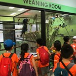 27 September - P2 Learning Journey to Jurong Bird Park