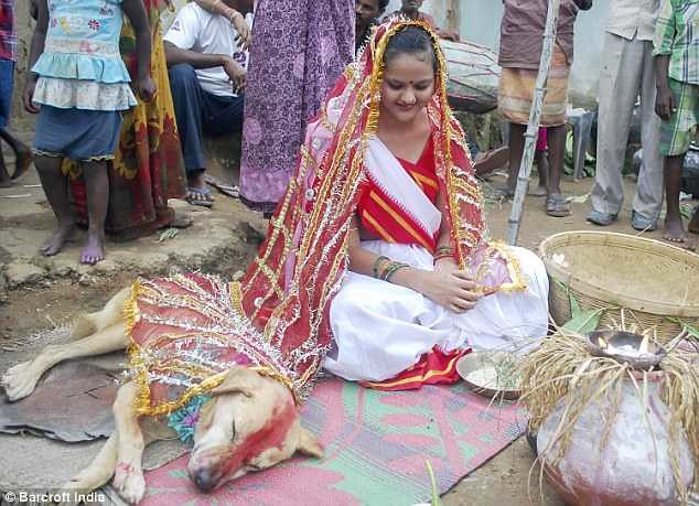 5371 An 18-years-old girl marries a stray dog in India 03