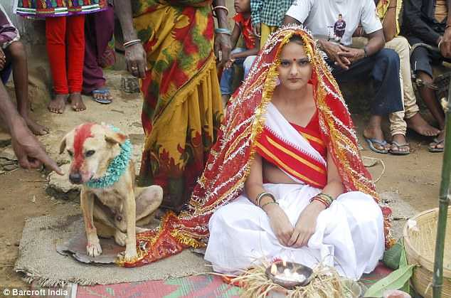 5371 An 18-years-old girl marries a stray dog in India 01