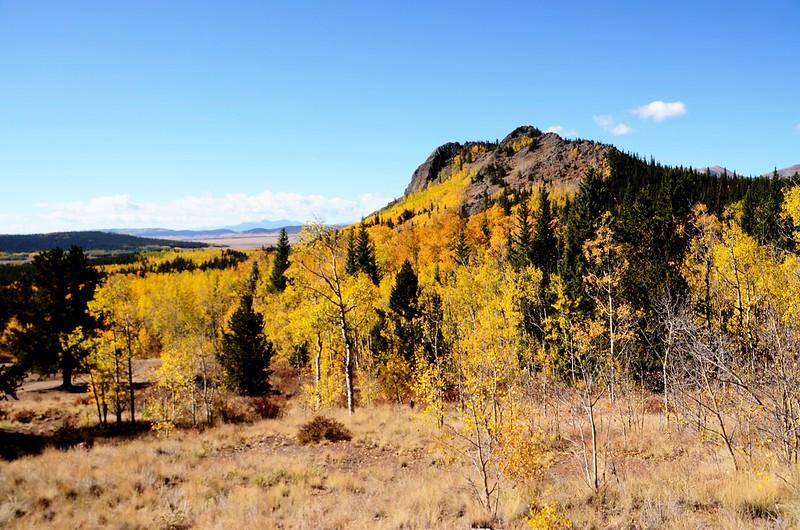 Jefferson Hill, Colorado Trail, Kenosha Pass (22)