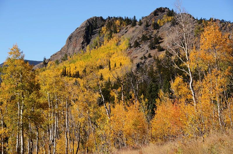 Jefferson Hill, Colorado Trail, Kenosha Pass (7)