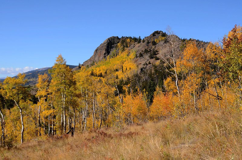 Jefferson Hill, Colorado Trail, Kenosha Pass (6)