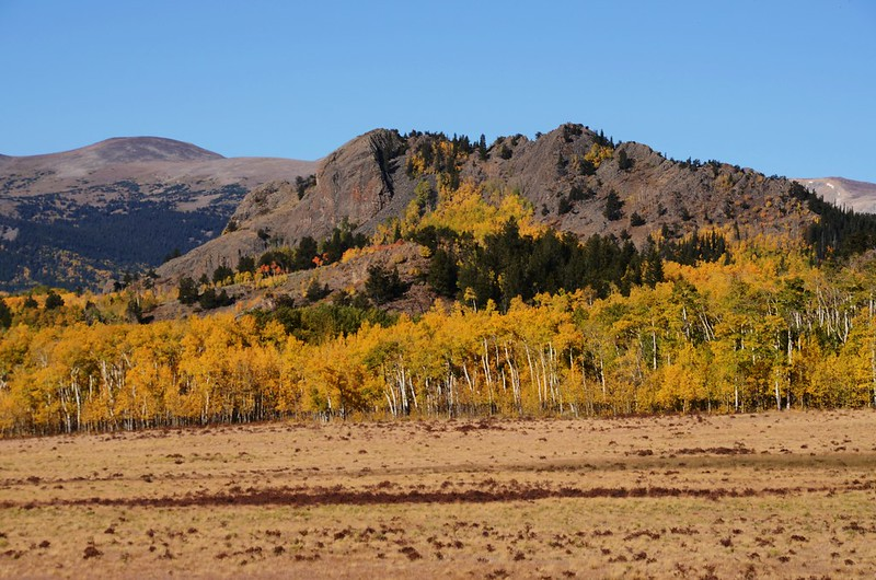Jefferson Hill, Colorado Trail, Kenosha Pass (2)