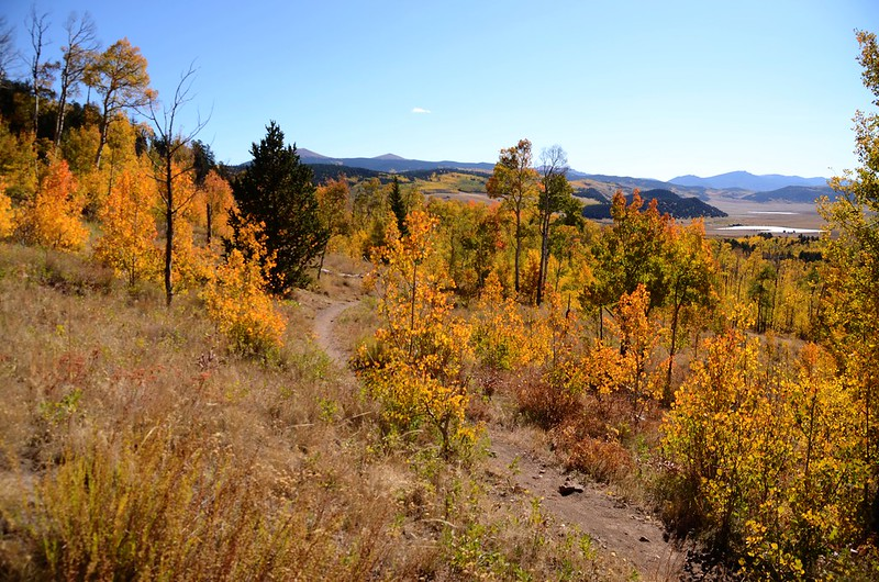 Fall foliage hike at Colorado Trail, Kenosha Pass  (132)