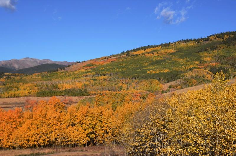 Fall foliage hike at Colorado Trail, Kenosha Pass  (58)