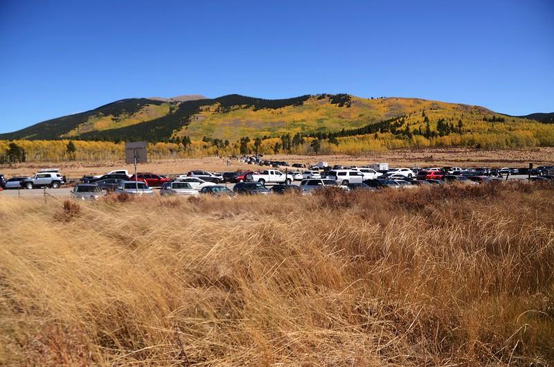 Fall Foliage in Kenosha Pass, Colorado (7)