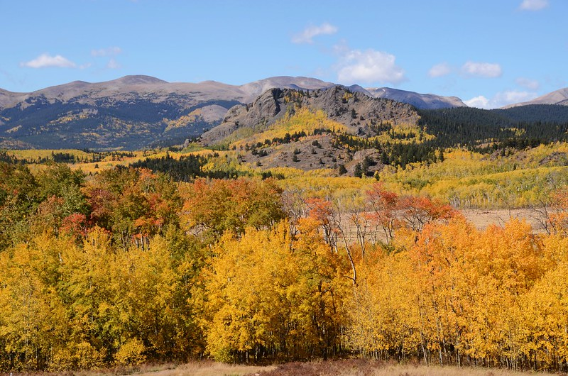 Fall foliage hike at Colorado Trail, Kenosha Pass  (177)