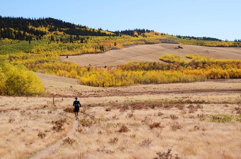 Fall foliage hike at Colorado Trail, Kenosha Pass  (161)