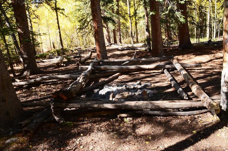 Fall foliage hike at Colorado Trail, Kenosha Pass  (138)