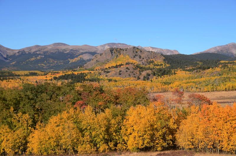 Fall foliage hike at Colorado Trail, Kenosha Pass  (57)