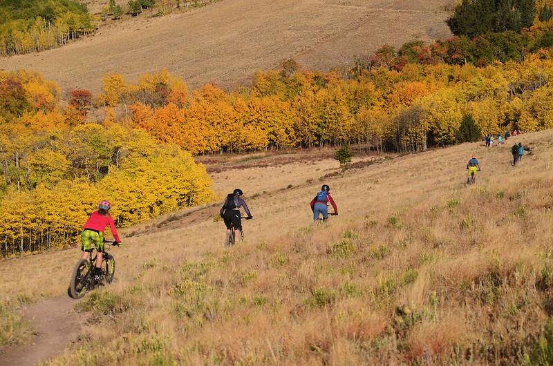 Fall foliage hike at Colorado Trail, Kenosha Pass  (47)