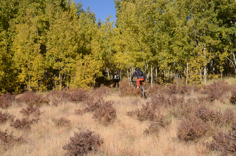 Fall foliage hike at Colorado Trail, Kenosha Pass  (85)