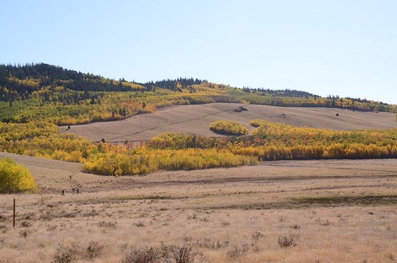Fall foliage hike at Colorado Trail, Kenosha Pass  (83)