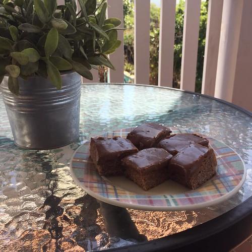 coconut fudge squares 2