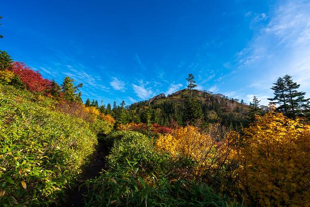 黒沢岳と紅葉