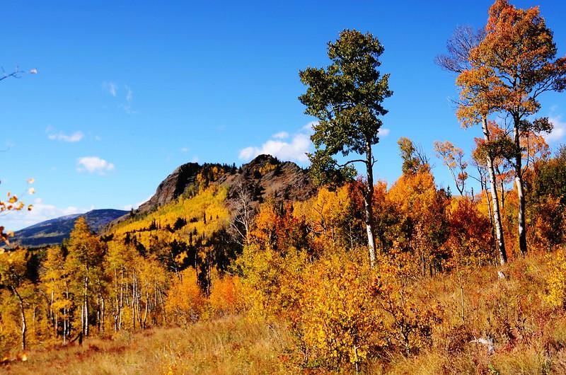 Jefferson Hill, Colorado Trail, Kenosha Pass (28)