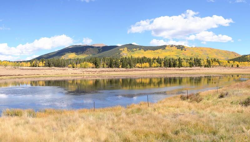 Fall Foliage in Kenosha Pass, Colorado (51)
