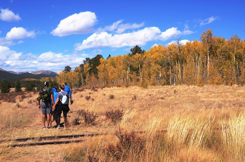 Fall Foliage in Kenosha Pass, Colorado (14)
