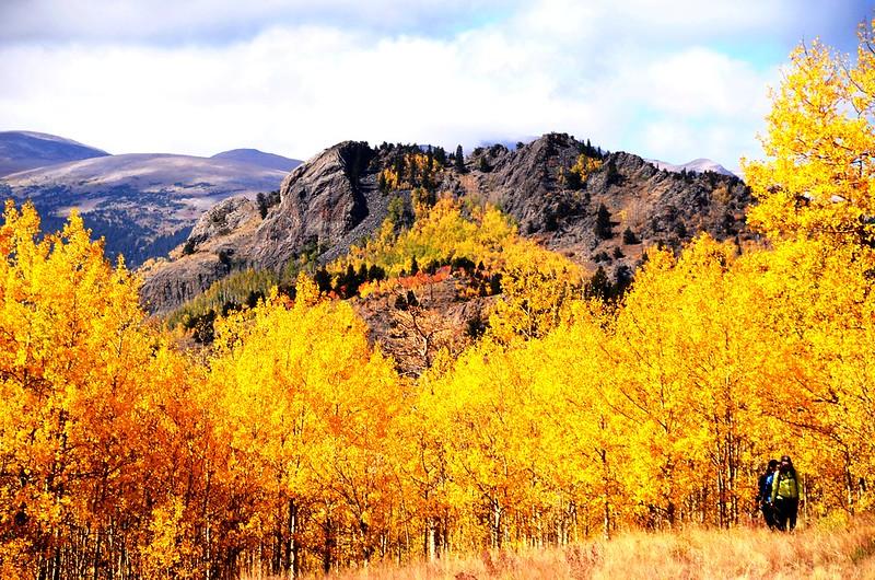 Fall foliage hike at Colorado Trail, Kenosha Pass (4)