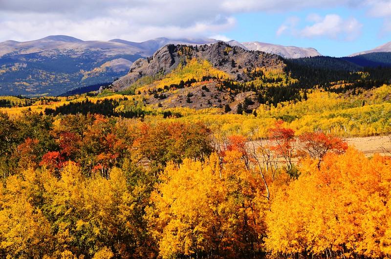 Fall foliage hike at Colorado Trail, Kenosha Pass (1)