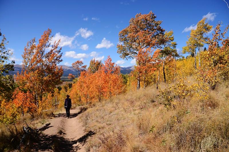 Fall foliage hike at Colorado Trail, Kenosha Pass  (235)