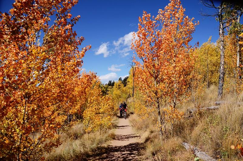 Fall foliage hike at Colorado Trail, Kenosha Pass  (230)
