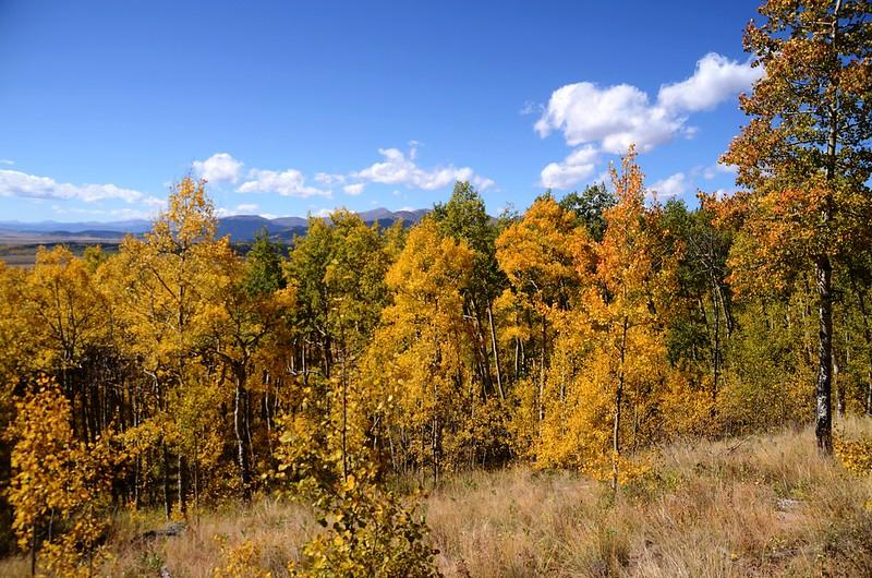 Fall foliage hike at Colorado Trail, Kenosha Pass  (217)