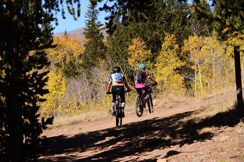 Fall foliage hike at Colorado Trail, Kenosha Pass  (140)