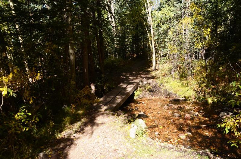 Fall foliage hike at Colorado Trail, Kenosha Pass  (137)