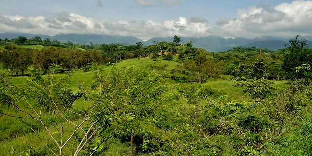 MEXICO, Yucatán ,  Quer durch Chiapas,  so green,  19315/11997