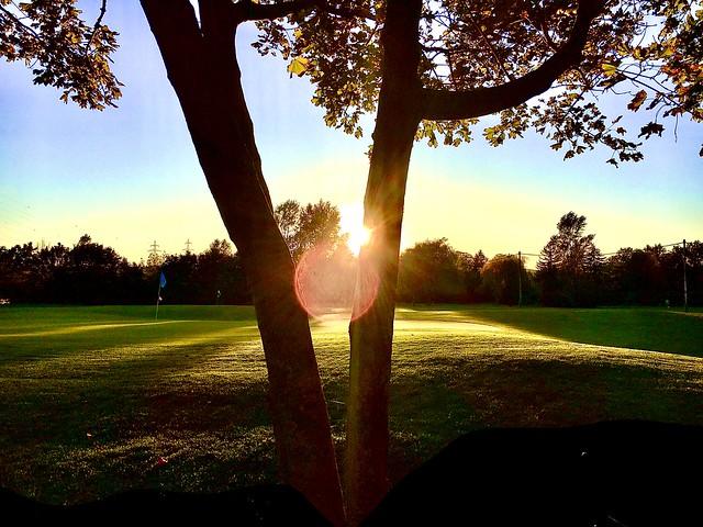 Golf am Abend