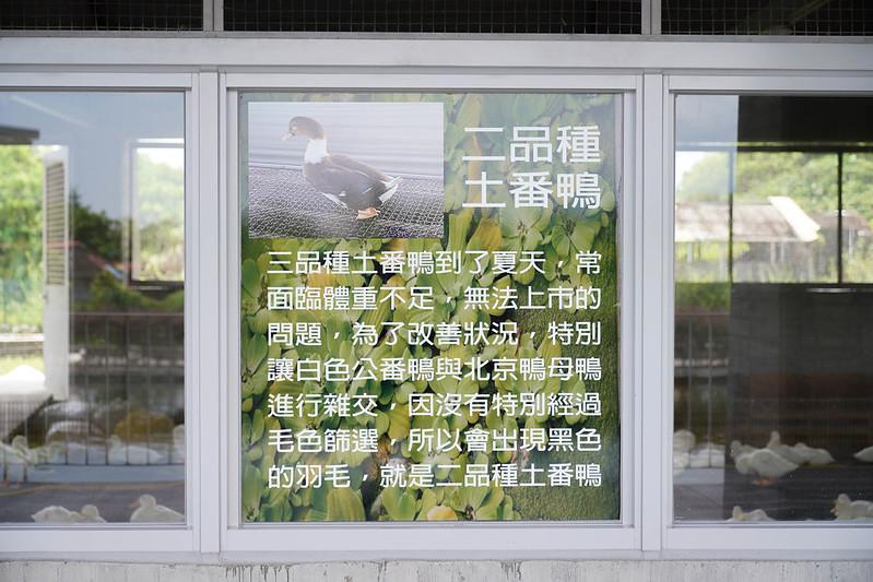 甲鳥園 (40)