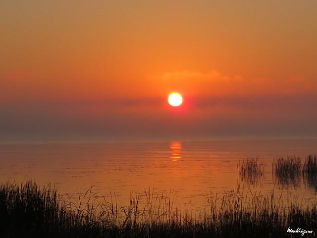 September Morning - Matin d'automne