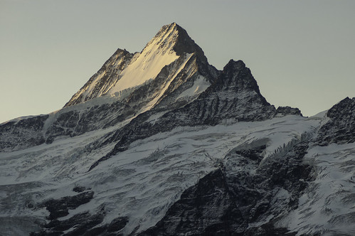 shadow mountain mountains landscape schweiz landscapes horizon glacier mountainside grindelwald morningsun horizons latesummer confoederatiohelvetica sunrise switzerland shadows summer suisse svizzera