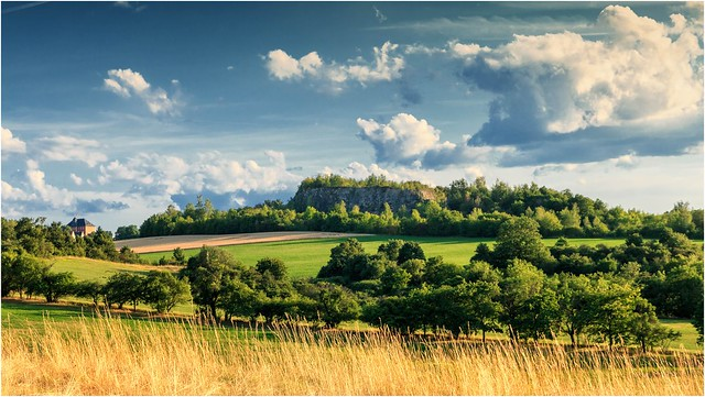 Eine Sommerlandschaft hinter gelben Gras