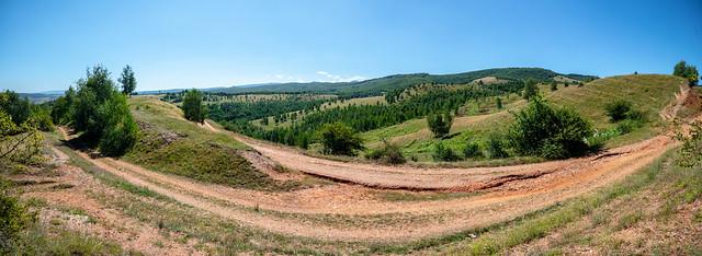Habitat of Colias myrmidone