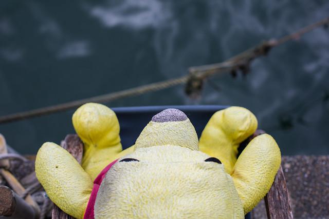 Winnie the Pooh, Hong Kong