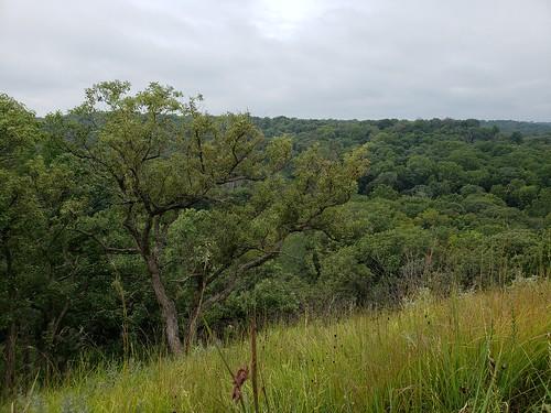 Mon, 08/26/2019 - 15:55 - Indian Cave