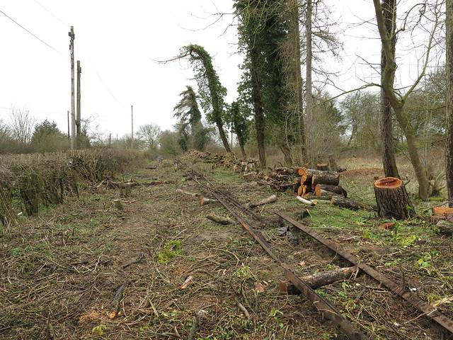 Rails & Logs