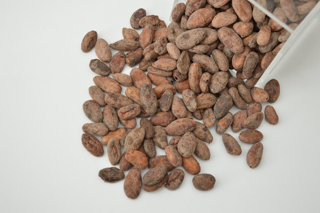 pörkölt ecuadori kakaóbab
