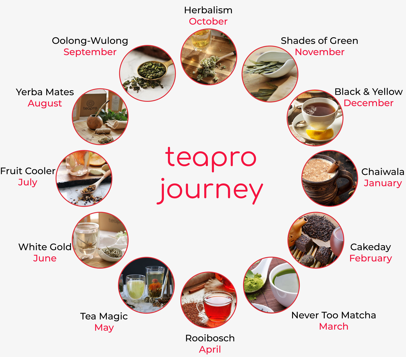 teapro tea journey