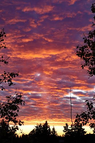 sunset edmonton alberta 80d sunpillar